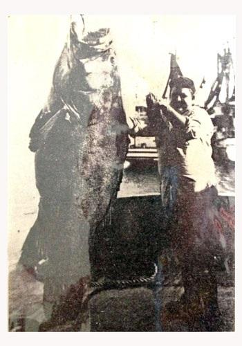 Felix and the big fish.